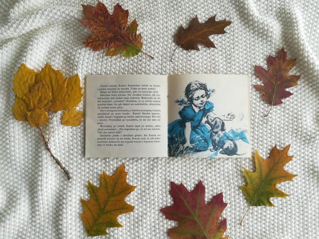 Kolekcja Poczytaj Mi Mamo Wydawnictwa Nasza Księgarnia